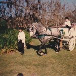 Horse carriage at private farm.